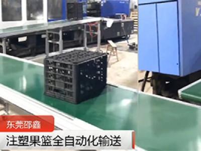 注塑果篮全厂皮带线自动化输送案例